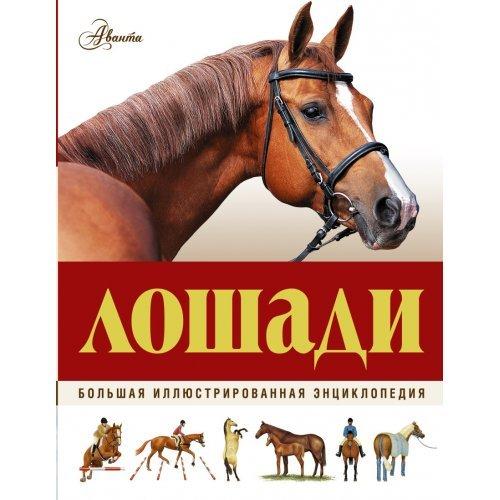 (Аванта) (б/ф) (тв) Большая энциклопедия. Лошади
